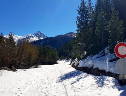 alpsblog1