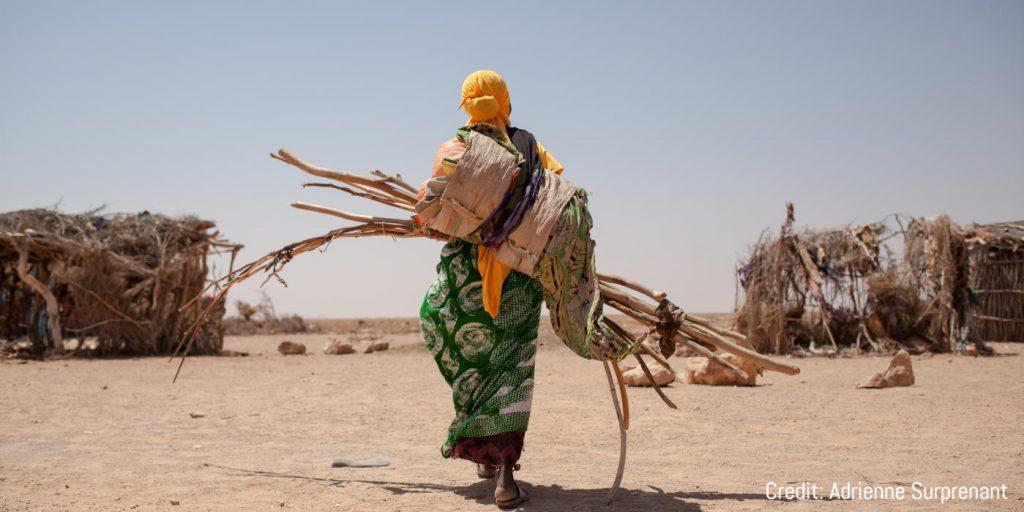 Drought-Somaliland-NRC