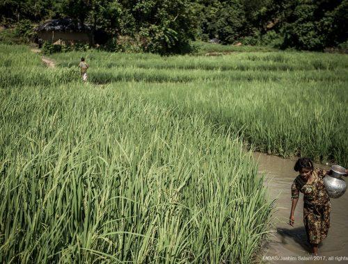 Bangladesh 28
